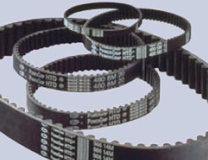 Powergrip Htd 8m 14m E 20m Cinghia Sincrona Gates